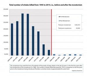 en_statistics-total-kills-1945-2014-moratorium-media