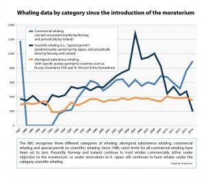en_statistics-whaling-data-categories-media